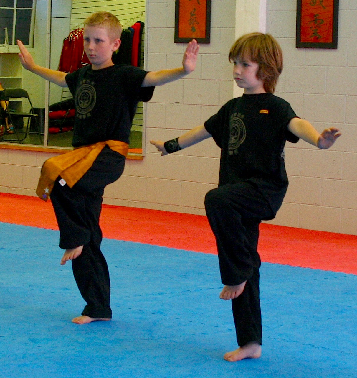 Superior Gross Motor Skills<br /> Strengthening of the body<br /> Developing Static & Dynamic Balance<br /> Improvement of Agility<br /> Improvement of Isolated Movement Skills<br /> Developing Coordination<br /> Increase Speed of Movement & Reflexes<br /> Development of Endurance<br /> Foundation of Martial Arts Skills