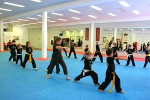 Juniors_Martial_Arts_Group_Class_01