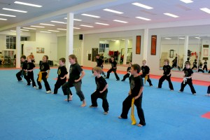 Juniors_Martial_Arts_Group_Class_02