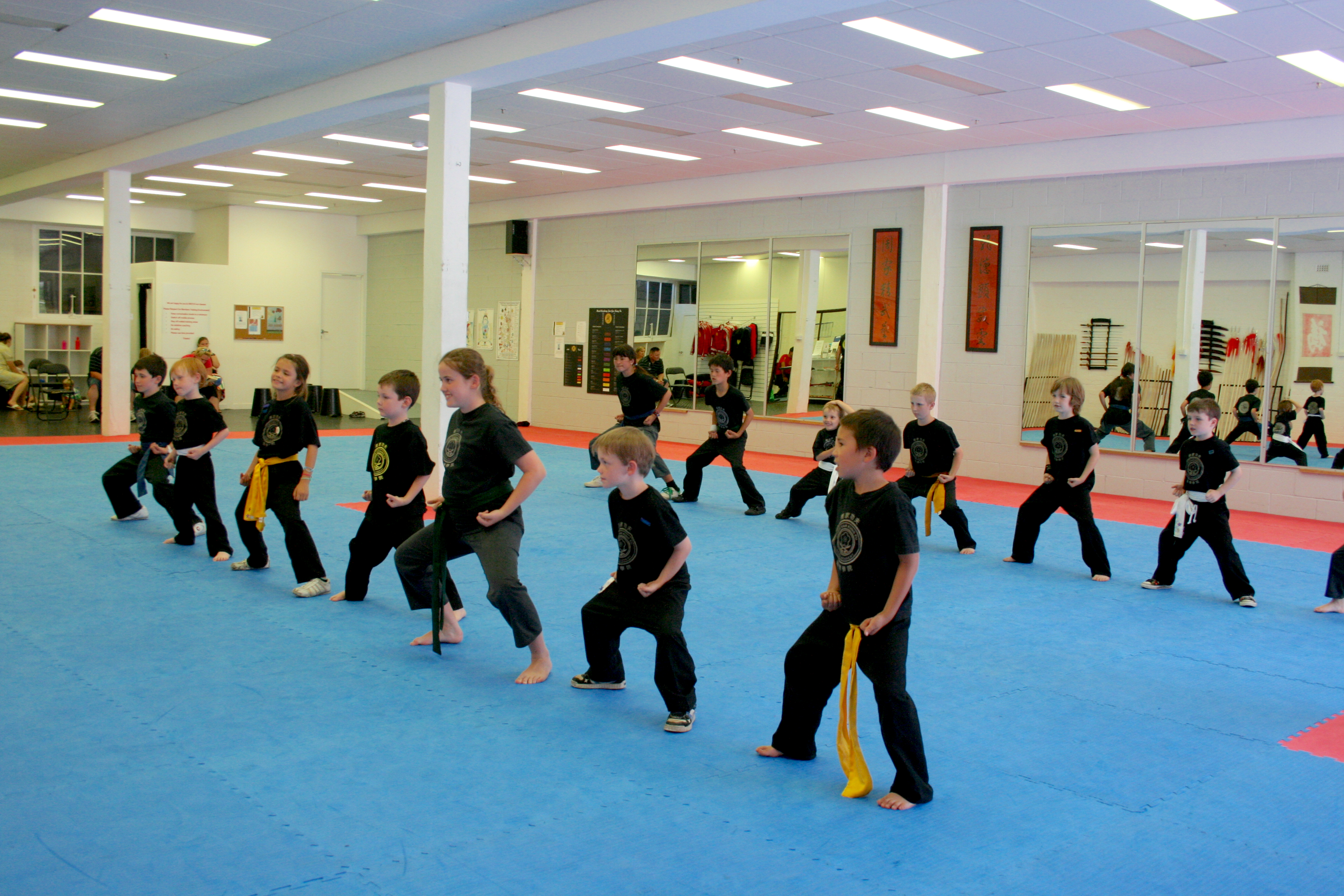Our Childrens Kung Fu Programs are a vehicle through which a child can discover confidence and learn about the importance of persisting with endeavors that they may find difficult. Self defence is an essential and inherent part of what we do. Click through for more details.