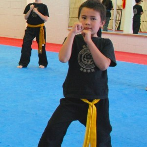 Juniors_Martial_Arts_Stance_3