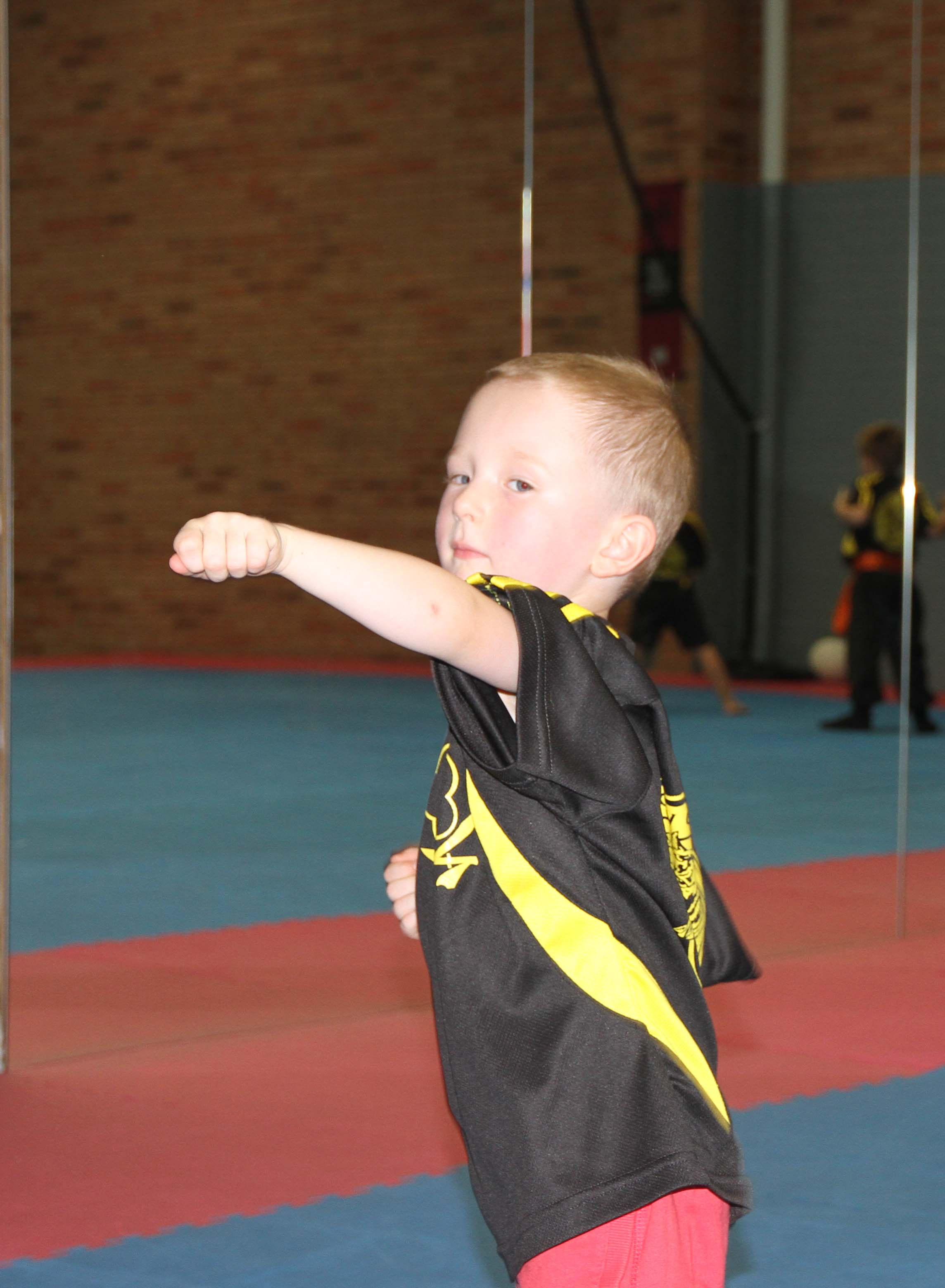Our Little Tigers Kung Fu Programs focus on discipline, movement, coordination, mobility strength and flexibility while building a foundation for effective self defence.