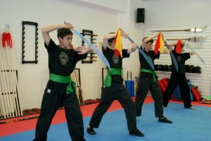 Teenage_Martial_Arts_Swords