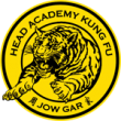Head Academy Kung Fu The Art, The Philosophy, The skill. More than Kicks and Punches.
