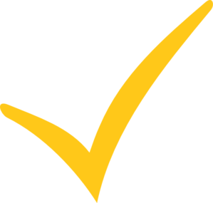 Image result for yellow tick